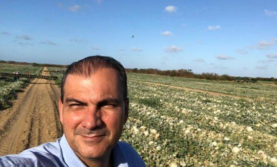 SL Alimentos começa hoje colheita experimental de trigo na Chapada do Apodi
