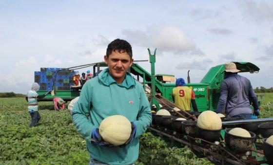 Estimativa é de US$ 80 milhões em exportações de frutas até o final deste ano no Ceará