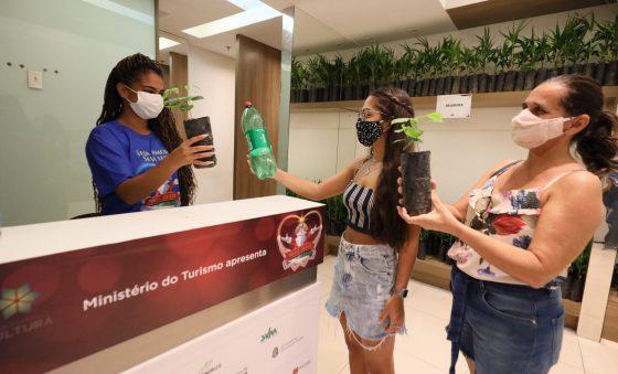 Ceará Natal de Luz distribui mais de 1,5 milhão de mudas e lança aplicativo