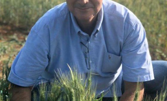 SL Alimentos vai lançar linha de massas Puríssima, afirma Alexandre Sales