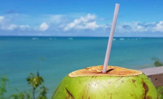Coco é vida – Pipo Gurjão