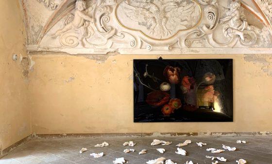 Exposição evoca a vulnerabilidade da natureza e do humano – Aldonso Palácio